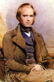 Early Theories Of Evolution Darwin And Natural Selection Picture Of A Portrait Of Charles Darwin In His S High School Essay Example also Buy College Speeches Online  Where Is A Thesis Statement In An Essay