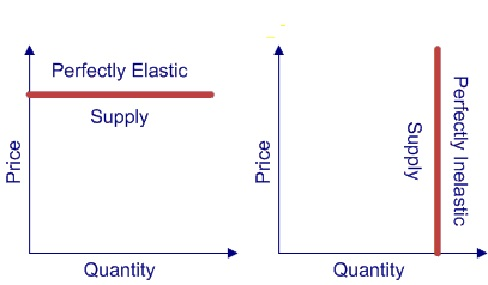 perfectly elastic supply example