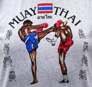 Muay Thai (kickboxing) | iTravel2Learn